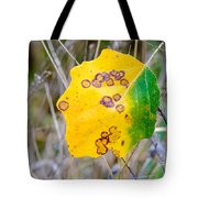 Autumn Poplar Leaves Tote Bag