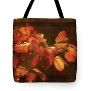 Autumn Promise Tote Bag