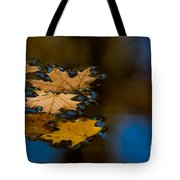Autumn Puddle Tote Bag
