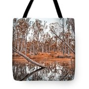 Autumn Reflections V2 Tote Bag