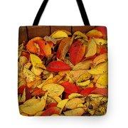 Autumn Remains 2 Tote Bag