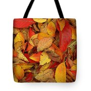 Autumn Remains Tote Bag
