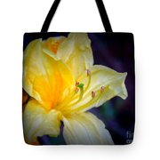 Autumn Respite Tote Bag
