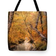 Autumn Riches 1 Tote Bag