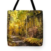 Autumn Road - Tipton Canyon - Casper Mountain - Casper Wyoming Tote Bag