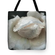 Autumn Roses And Rain Tote Bag