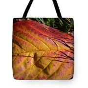 Autumn Saga Tote Bag