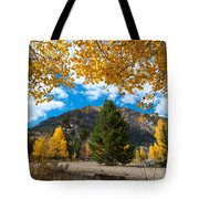 Autumn Scene Framed By Aspen Tote Bag by Cascade Colors