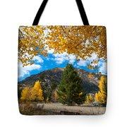Autumn Scene Framed By Aspen Tote Bag