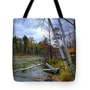 Autumn Scene Of Along The Shore Of The Platte River In Michigan Tote Bag