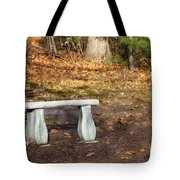Autumn Seat Tote Bag