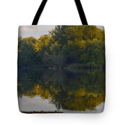 Autumn Shell Rock Panel 2 Tote Bag