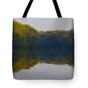 Autumn Shell Rock Panel 3 Tote Bag