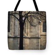 Autumn Silhouette Tote Bag