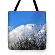 Autumn Sky 2 Tote Bag