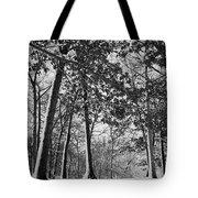 Autumn Snow Tote Bag