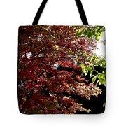 Autumn Snowball Bush Tote Bag