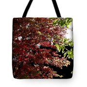 Autumn Snowball Bush Tote Bag