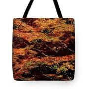 Autumn Solarisation 1 Tote Bag
