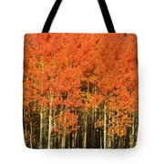 Autumn Splender  Tote Bag