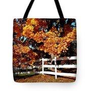 Autumn Splendor 10 Tote Bag