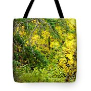 Autumn Splendor 14  Tote Bag