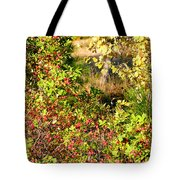 Autumn Splendor 7 Tote Bag