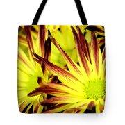 Autumn Starburst Tote Bag