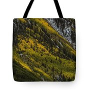 Autumn Streaks Tote Bag