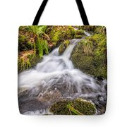 Autumn Stream Tote Bag