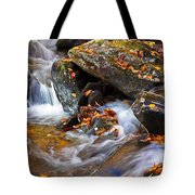 Autumn Stream North Georgia Tote Bag