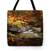 Autumn Stream Square Tote Bag