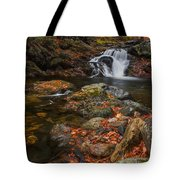Autumn Streams In Tamworth Tote Bag