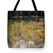 Autumn Sun On Mountain Pond Tote Bag