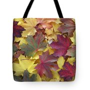 Autumn Sycamore Leaves Germany Tote Bag