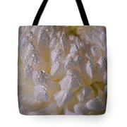 Autumn Tears Tote Bag