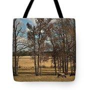 Autumn Texas Pasture Tote Bag