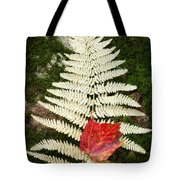 Autumn Textures Square Tote Bag