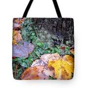 Autumn Tree Trunk  Tote Bag