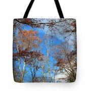 Autumn Trees And Heaven Tote Bag