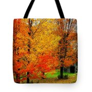 Autumn Trees By Barn Tote Bag