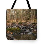Autumn Tributary Path Tote Bag