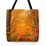 Autumn Tunnel Of Trees Tote Bag
