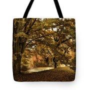 Autumn Umbrella Tote Bag