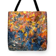 Autumn Vineyard Sunlight Tote Bag