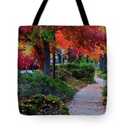 Autumn Walk In Grants Pass Tote Bag