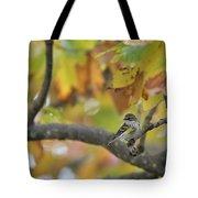 Autumn Warbler Tote Bag