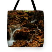 Autumn Washed Away Tote Bag