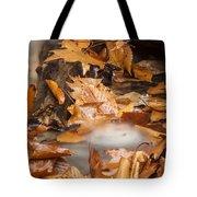 Autumn Water Eddy Tote Bag