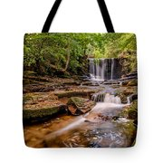 Autumn Waterfall Tote Bag by Adrian Evans